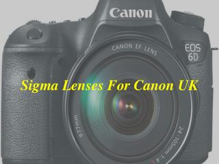 Buying Sigma Lenses For Sony UK, Canon and Nikon Camera Models