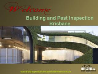 Brisbane Best Building and Pest Inspection