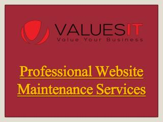 Professional Website Maintenance Services