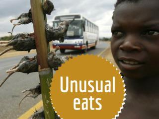 Unusual eats