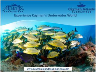 Cayman Islands Submarine - Experience Cayman's Underwater World