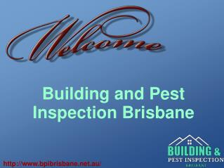 Building Inspection and Pest Control Services In Brisbane