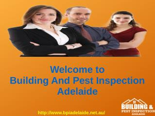 Pest And Building Inspection in Adelaide