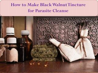 How to Make Black Walnut Tincture for Parasite Cleanse