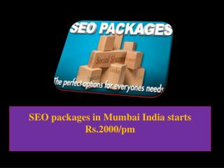 SEO packages in Mumbai India starts Rs.2000/pm