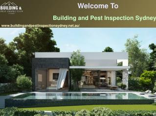 Inspection for Building and Pest Control Services Sydney