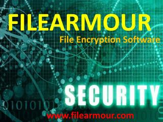 Solve Your Privacy Problems and Secure Data Transfer with FileArmour