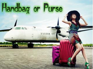 Handbag or Purse