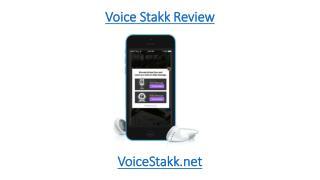 Voice Stakk Review
