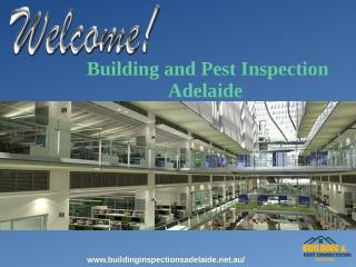 Best Building And Pest Inspection Services in Adelaide