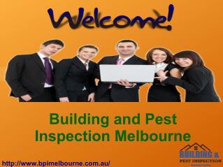 Pest Inspection Melbourne in Melbourne