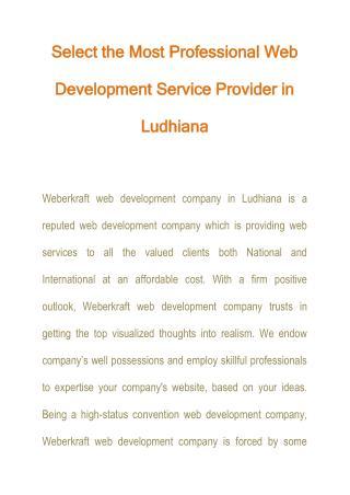 Professional Web Development Service Provider
