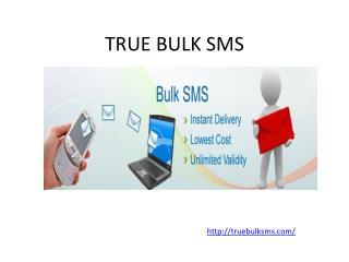 True Bulk SMS Service Provider