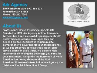 Horse Insurance