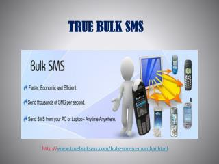 Reasonable And Best Bulk Sms Provider In Patna