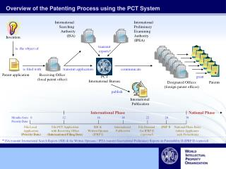 Overview of the Patenting Process using the PCT System
