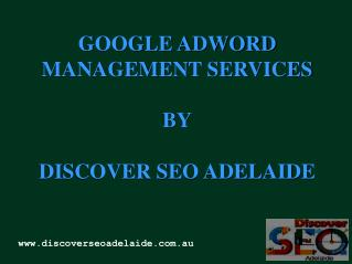 Google Adwords Management Services in Adela
