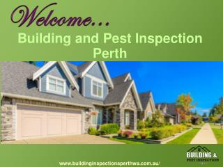 Building And Pest Inspection Services In Perth