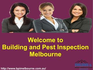 Best Pest Inspection Services In Melbourne