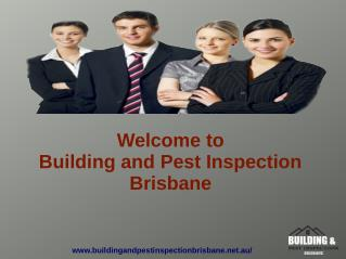 Pest And Building Inspection Brisbane