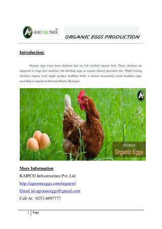 organic eggs store