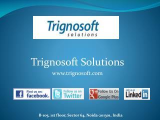Trignosoft Solutions - Professional Web Design, Development and SEO Services Company India
