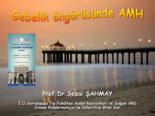 Gebelik Öngörüsünde AMH