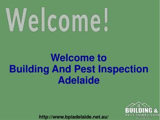 Pest Inspection services in Adelaide