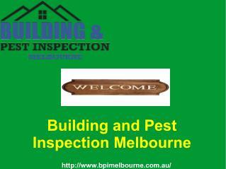 Termite Inspection Report in Melbourne