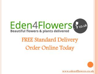 Flowers Online Delivery - Eden4Flowers