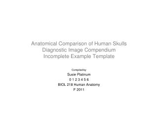 Anatomical Comparison of Human Skulls Diagnostic Image Compendium Incomplete Example Template