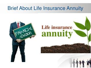 Brief About Life Insurance Annuity
