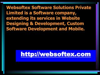 Website Designing, Web Development, MLM Software, HR Payroll Software, Chit Fund Software, Micro Finance Software