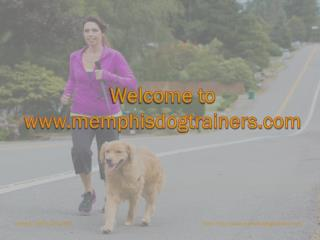 Memphis dog training