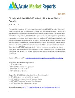 Global and China BTG SCR Industry 2014 Acute Market Reports