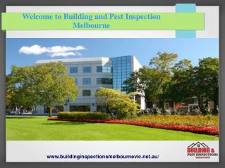 Building Inspections and Pest Control Melbourne