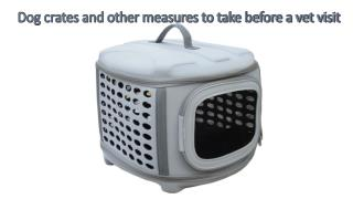 Dog crates and other measures to take before a vet visit