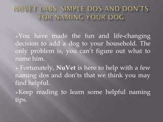 NuVet Labs: Simple Dos and Don'ts for Naming Your Dog