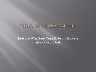 Reasons Why Zero Turn Ride on Mowers Are a Good Deal