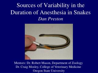 Sources of Variability in the Duration of Anesthesia in Snakes  Dan Preston