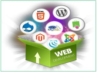Vertex Plus-Web Development Services