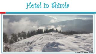 Hotel In Shimla - Snow King Retreat