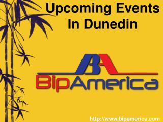 Free Dunedin Business Listing
