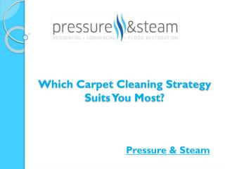 Which Carpet Cleaning Strategy Suits You Most?