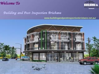 Building Pest Inspection Brisbane