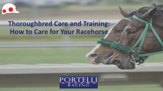 Thoroughbred Care and Training: How to Care for Your Racehorse