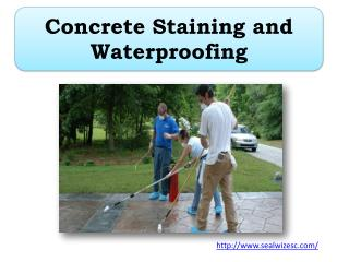 Concrete Staining and Waterproofing