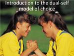Introduction to the dual-self model of choice