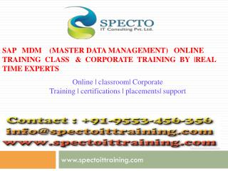 online training classes on sap mdm by real time experts