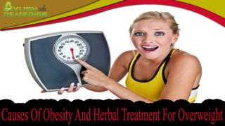 Causes Of Obesity And Herbal Treatment For Overweight